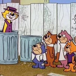 Le Pacha (Top Cat)